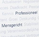 Link to detail page: KPMG Jaarverslag 2007/2008